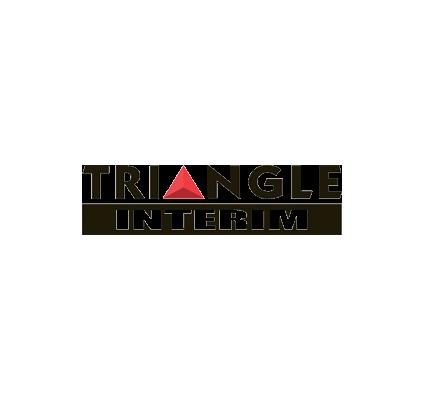 Triangle interim solutions