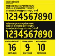 Flocages Dortmund- 2013-14